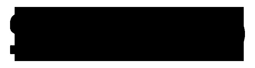 logo-stance